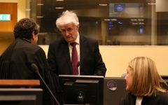 Hague Court Approves Skype Links for Karadzic, Mladic